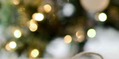 Weihnachtsbonus, Vitamin D+K, Ernährungsberater, my-lifestyler.com